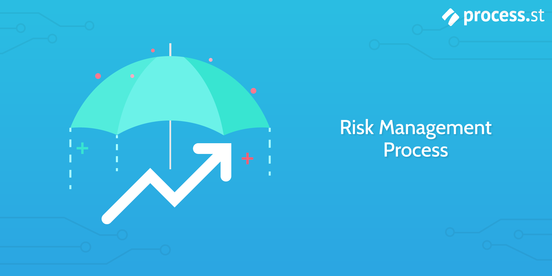 risk management process checklist