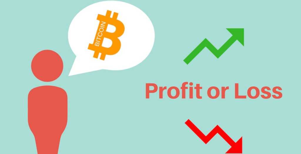 Profit and loss statement: